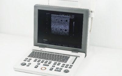 Samsung Sonoace R3